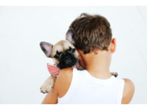 10+1 ok, amiért minden gyereknek kutya mellett kéne felnőnie