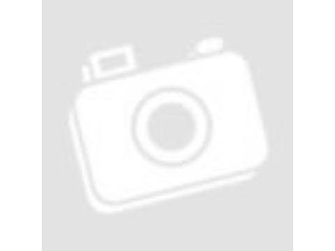 A kutyák helyes etetése