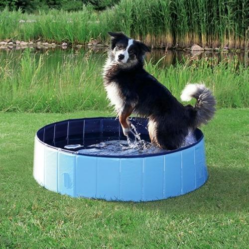 trixie_dog_pool_jpg.jpg
