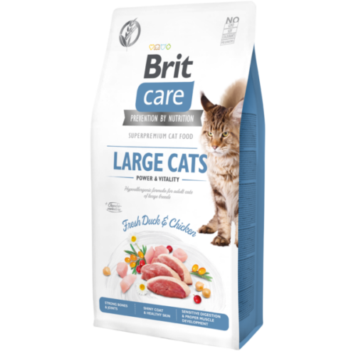 BCC_Dry_food_7kg_LARGE_CATS_1_png.png