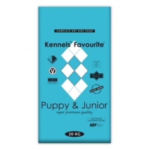 Ken Pup&Jun.jpg